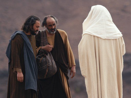 Picture of back of Jesus talking on the road to Emmaus